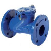 Фланцевый шаровой обратный клапан Brandoni F7.100 NBR DN50 (F7.10005010B)