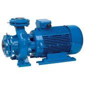 Центробежный поверхностный насос Speroni СS 80-160 B 18.5 кВт (101804400)